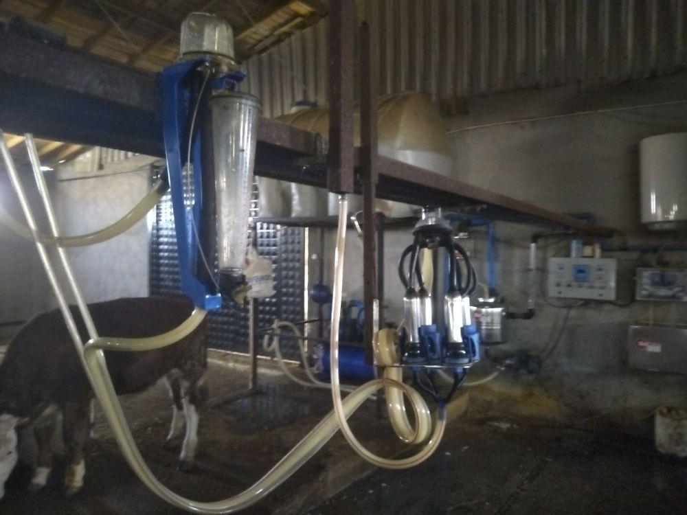 Süt Sağma Makinaları Sütkar Kilit arkası 10 lu Satılık 10 lu sağım sistemi