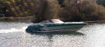 Amerikan Sea Ray Pachanga 22 / Kamaralı Sürat Tekn