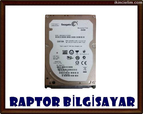 250 Gb Sata 2.5'' Laptop Hard Disk (Adetli)