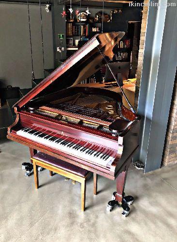 Steinberg (Kuyruklu Piyano)