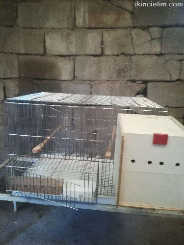 İkinciel uretim kafesi