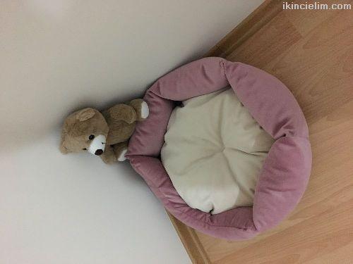 Yepyeni kedi yatağı