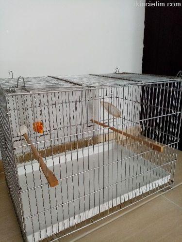 Papagan-Muhabbet Kafesi