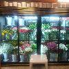 Çiçek dolabı